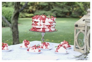Strawberry Rhubarb Pavlova