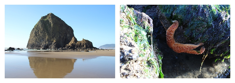 Angie's trip to Cannon Beach