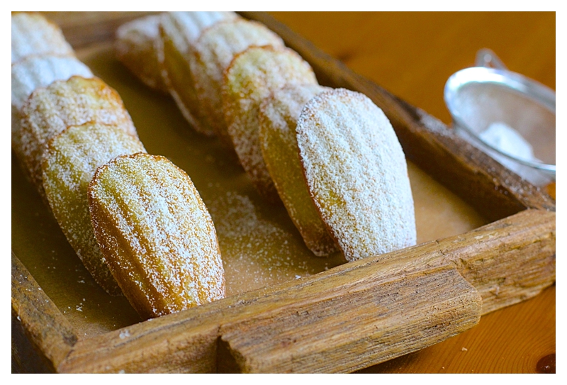 Son's French Madeleines