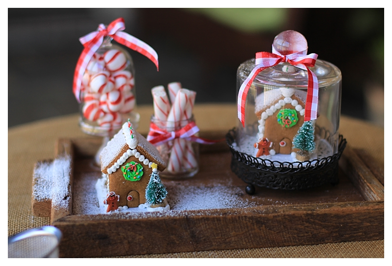 Angie's Small Gingerbread House